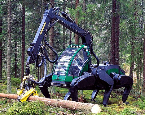 walking tree harvester photo
