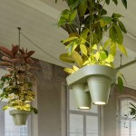 Bucket Lights Bring Instant Greenspace