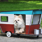 Get the Doggies Rolling… In a Dog Trailer